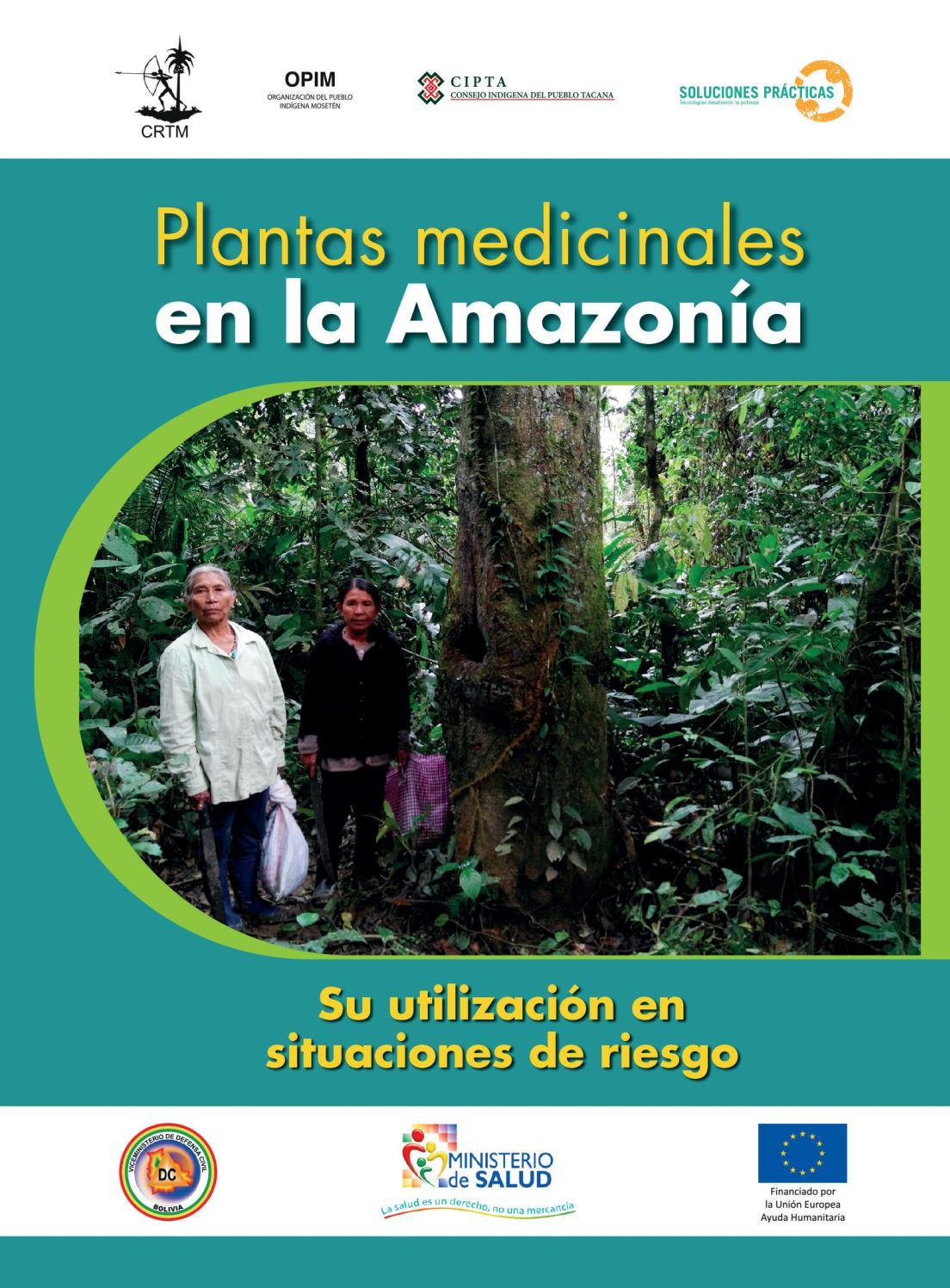 Inventario de plantas medicinales by FAO BOLIVIA/DOCUMENTACIÓN - issuu