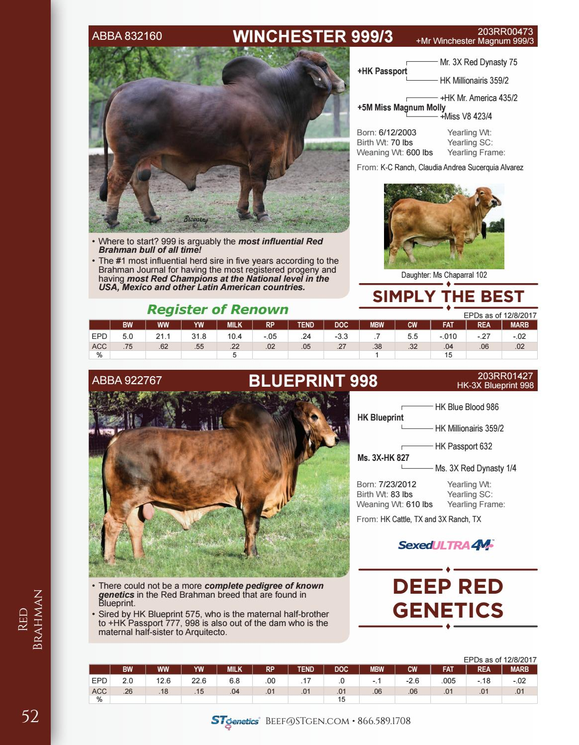 Stgenetics spring 2018 beef sire directory by stgenetics issuu malvernweather Images