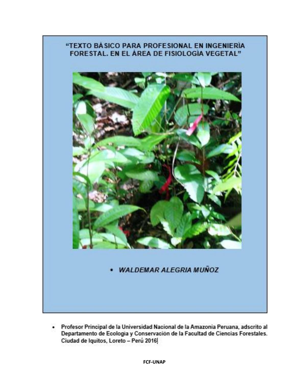 Fisiologia vegetal ingenieria forestal by meinardo - issuu