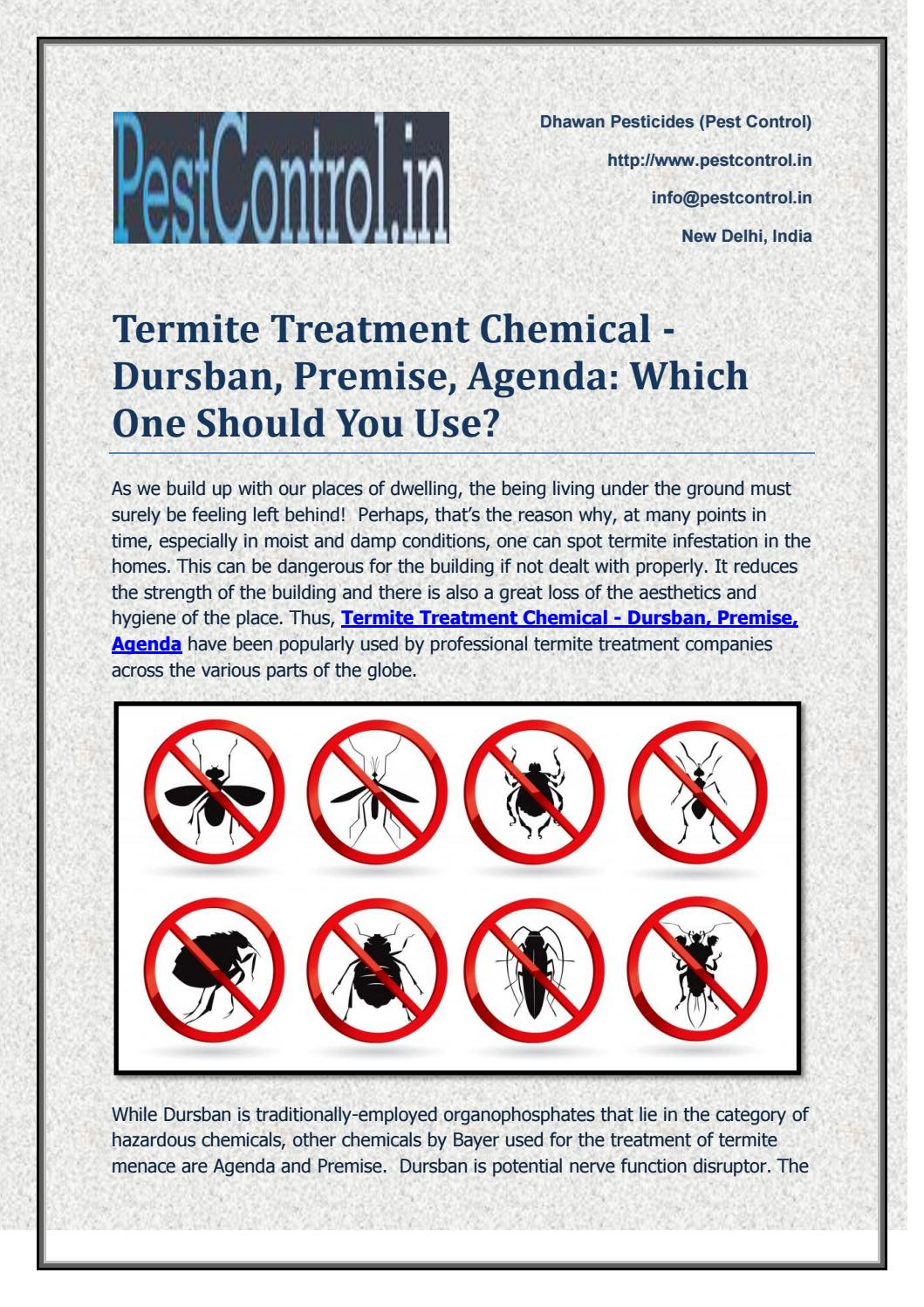 Termite Treatment Chemical Dursban Premise Agenda Which One Should You Use By Pest Control Issuu