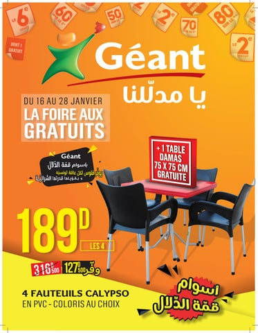 Catalogue Geant