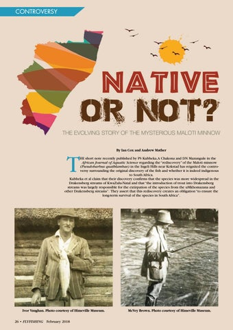 Page 26 of Native or not?