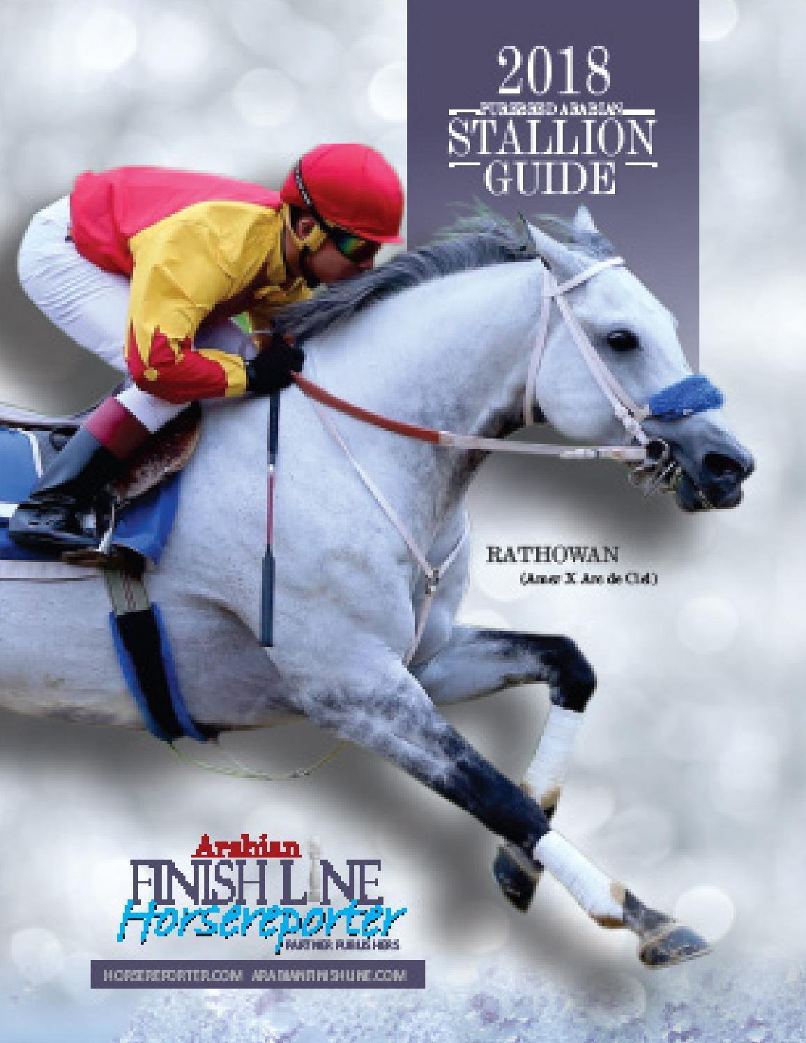 2018 Arabian Finish Line Horseereporter Stallion Guide By