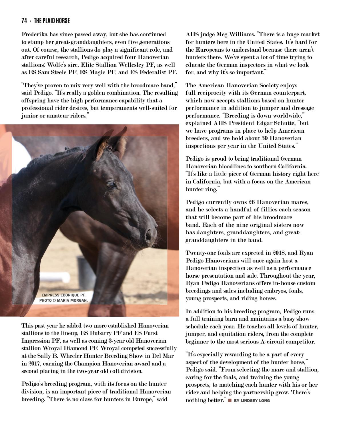 The Plaid Horse - February 2018 - The Stallion Issue by The