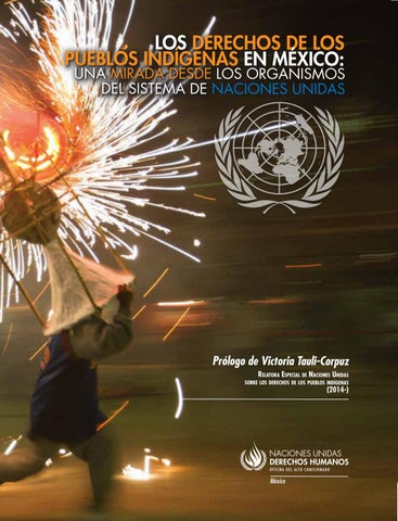 7259a86ddc Los derechos de los pueblos indígenas en México: una mirada desde ...