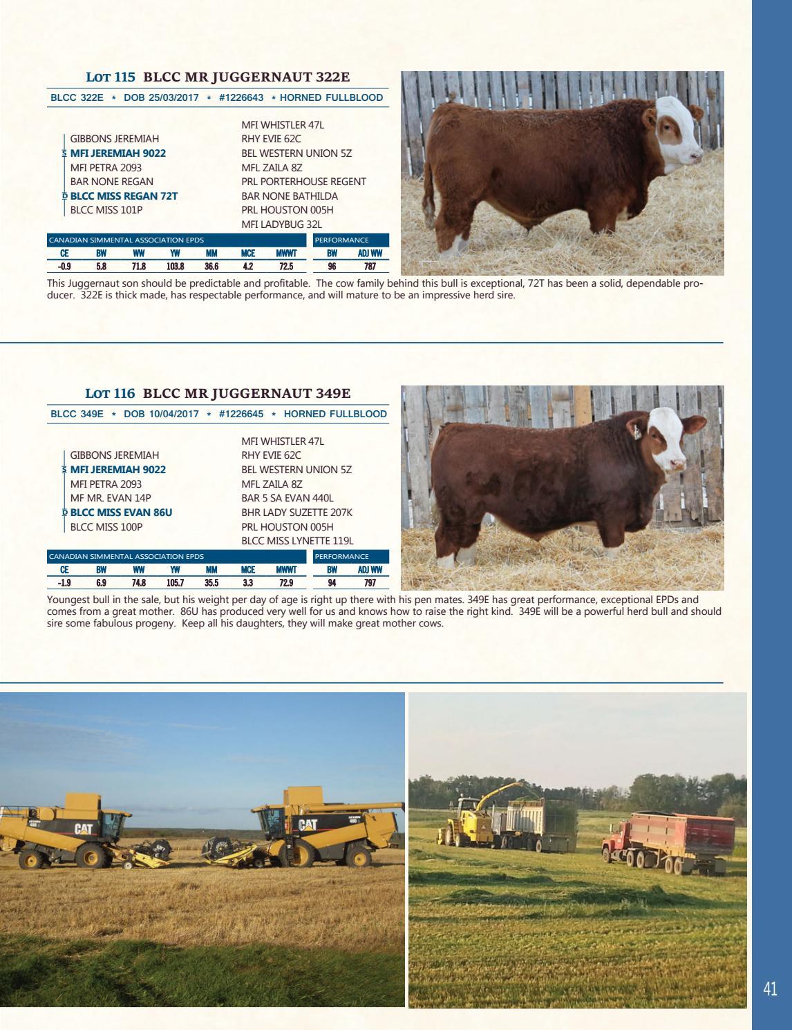 Bonchuk Farms 18th Annual Bull Sale by Bouchard Livestock