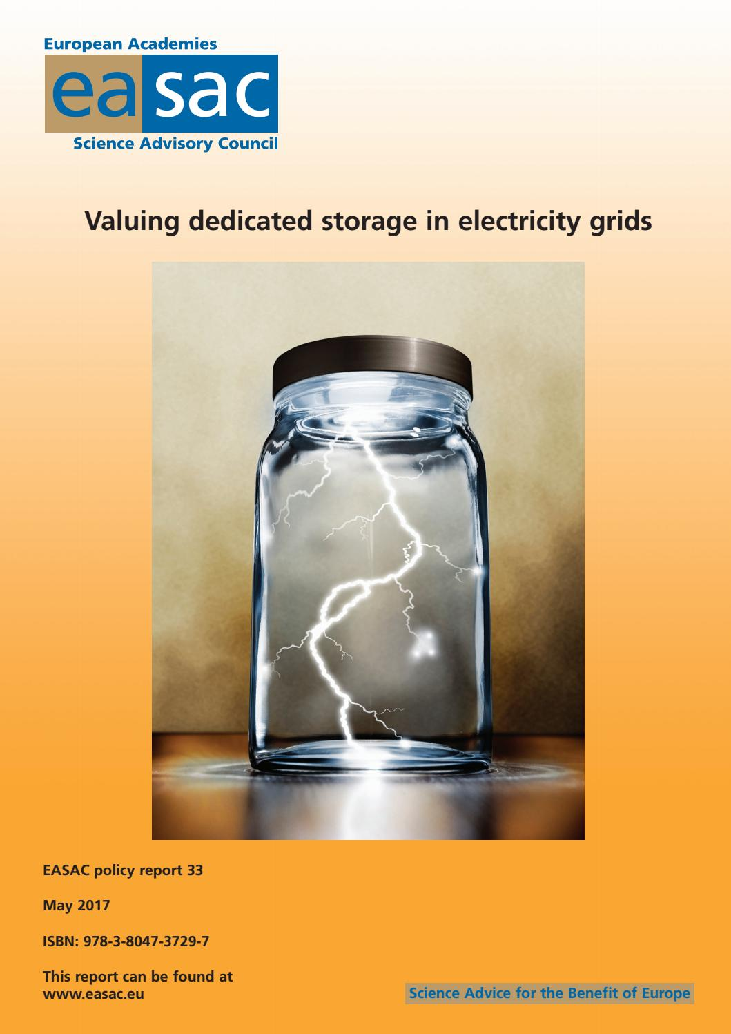 Valuing dedicated storage in electricity grids by EASAC