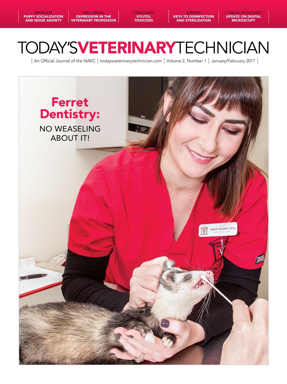 Brilliant Todays Veterinary Technician January 2017 By Davidpsu Issuu Machost Co Dining Chair Design Ideas Machostcouk