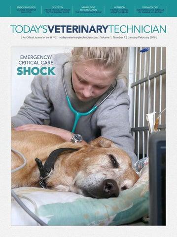 Today's Veterinary Technician, January 2016 by davidpsu - issuu