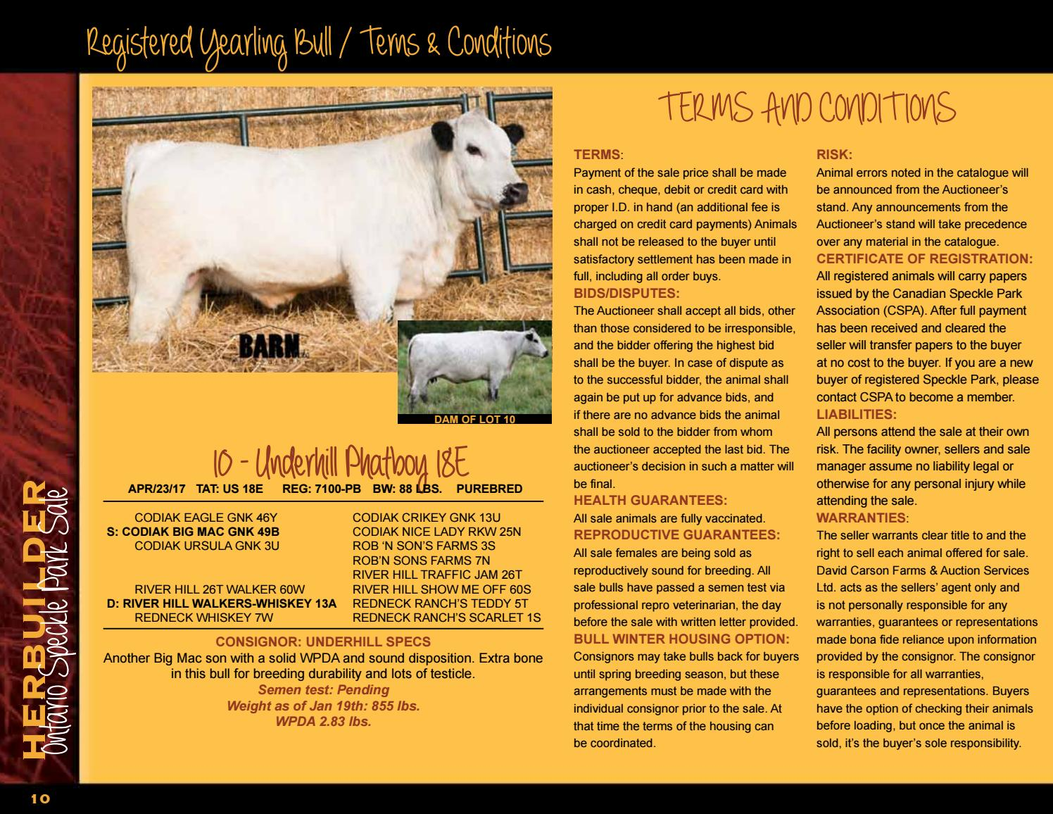 Herd Builder Bull & Female Sale 2018 by Today's Publishing