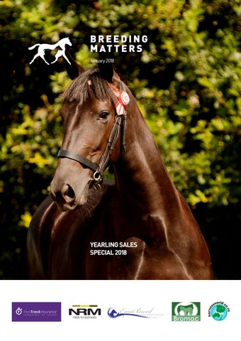 Age standardbreds mature