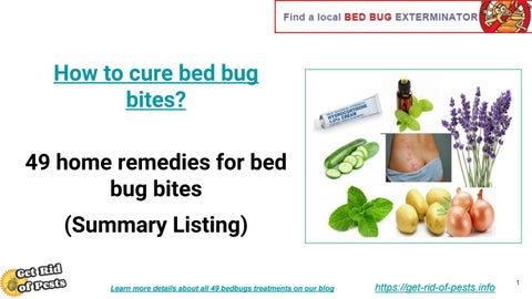 Summary 49 Home Remedies For Bed Bug Bites By John Michael