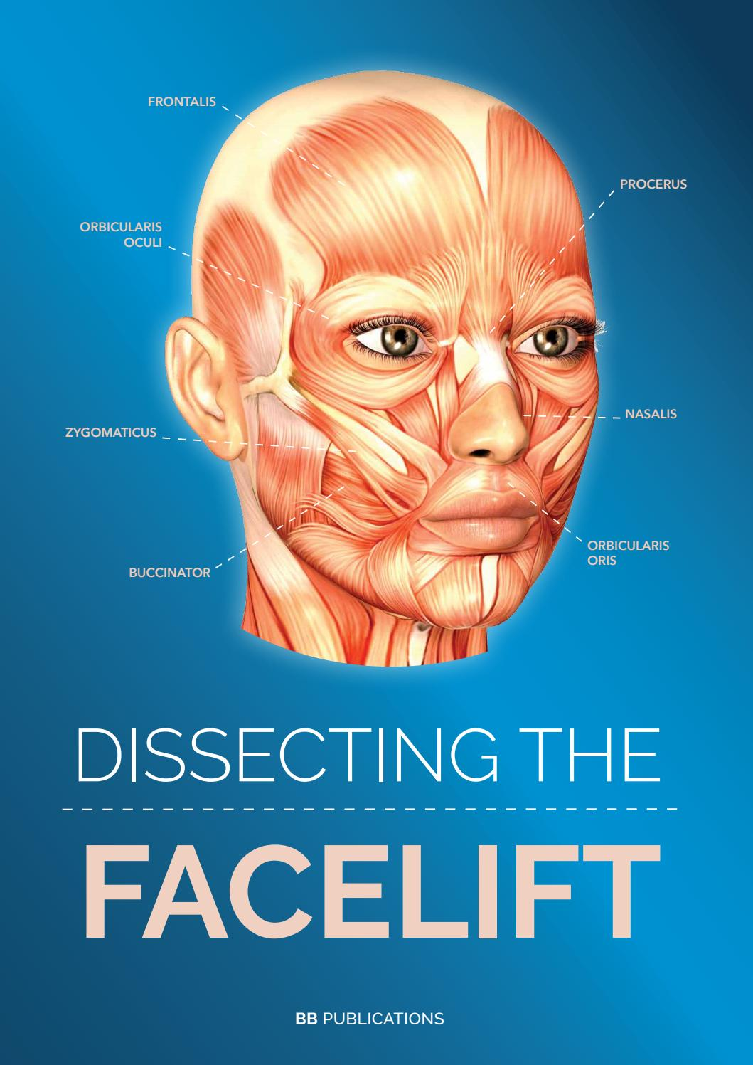 Dissecting the Facelift by caroline de bref - issuu 60d277d4665b3