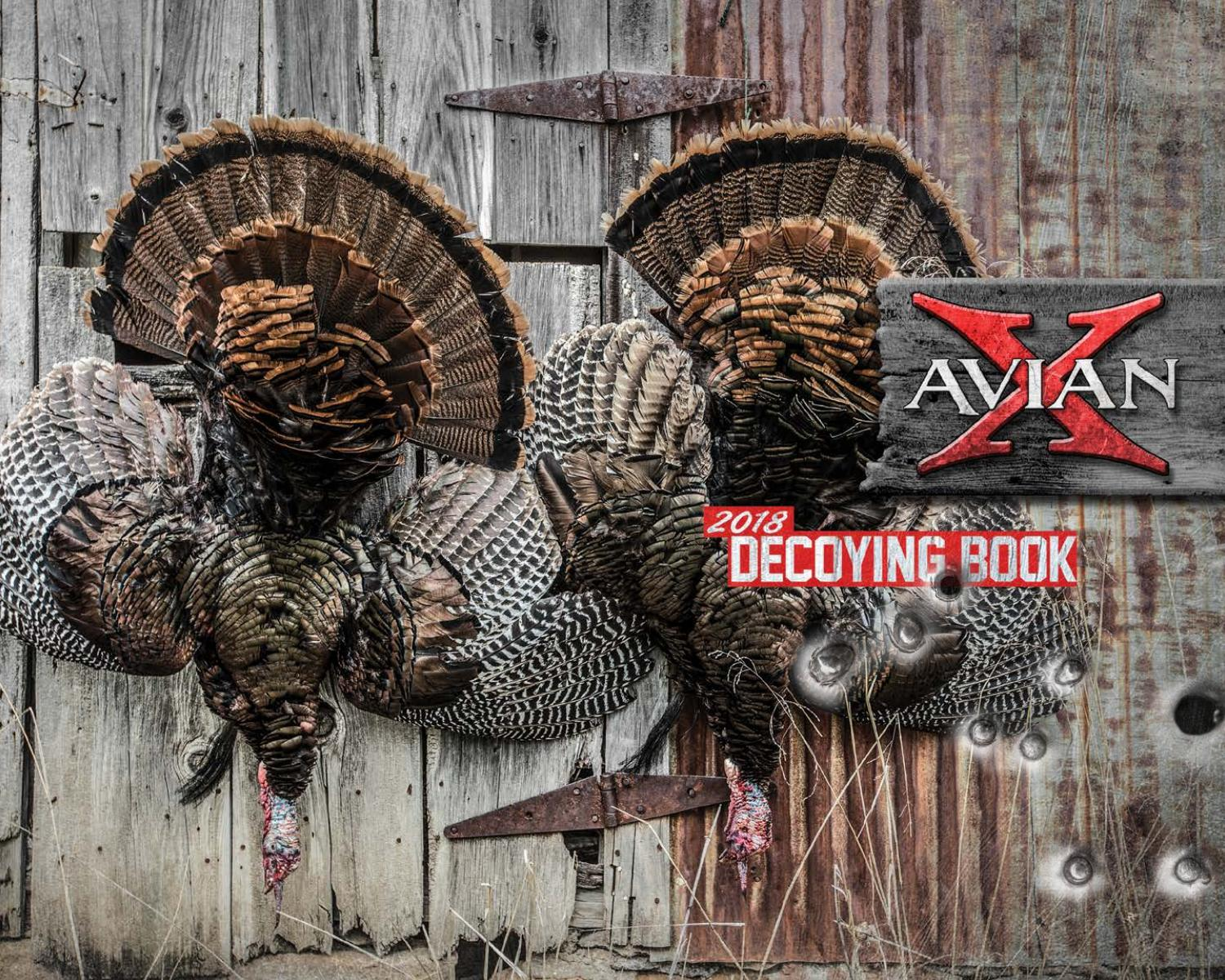 2018 Avian X Catalog By Planosynergy Issuu