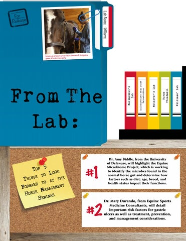 Page 12 of From the Lab