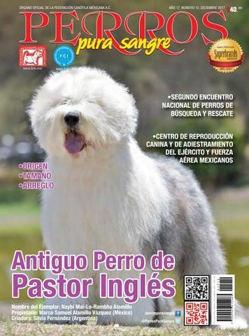 Revista Perros Pura Sangre Diciembre 2017 Antiguo Perro De Pastor