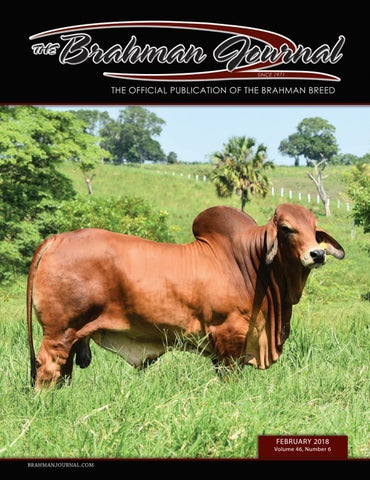 The Brahman Journal - February 2018 by Caballo Rojo Publishing - The ... 1946f02bd2a4
