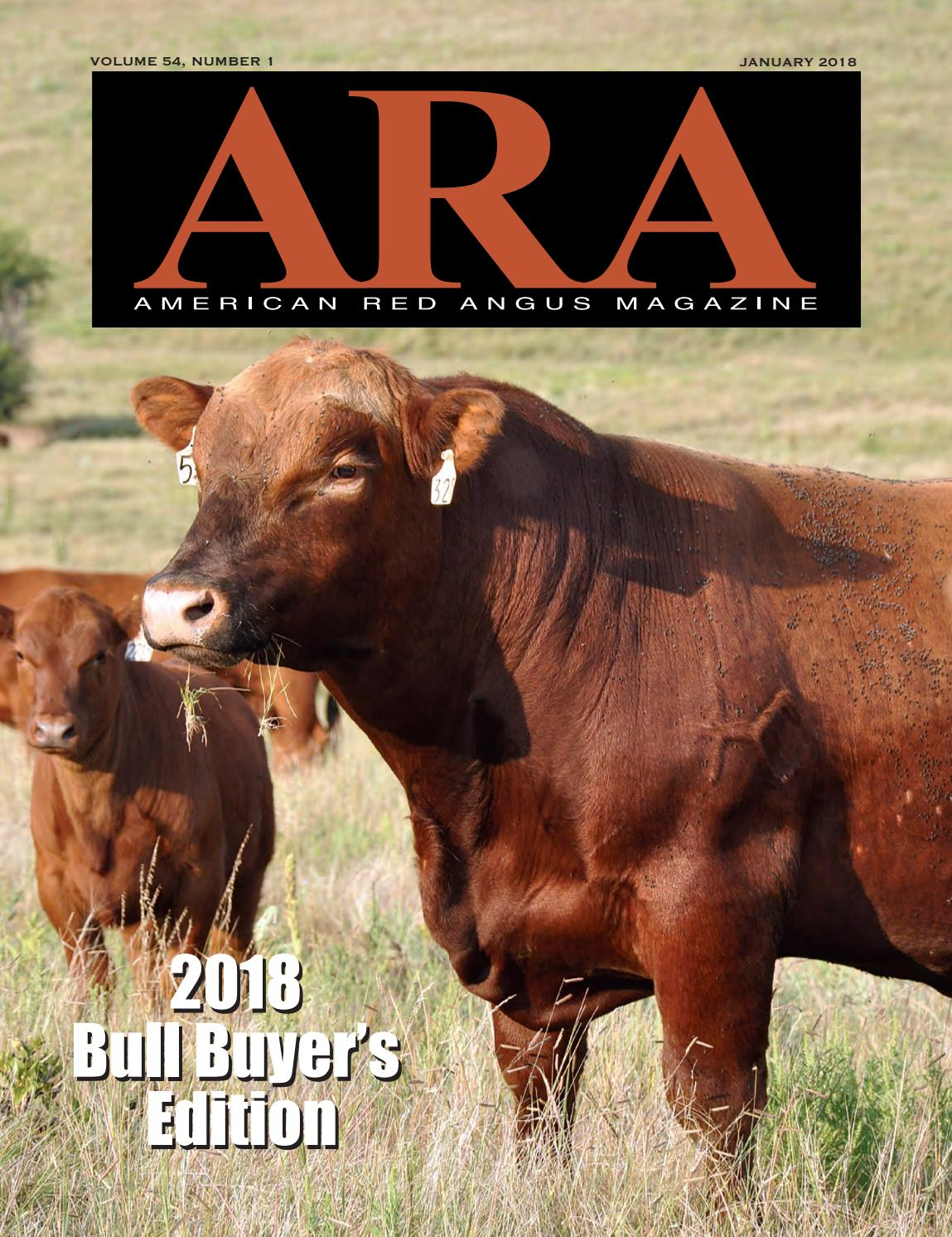 American Red Angus Magazine January 2018 By Association Ken Mobile K68 Of America Issuu