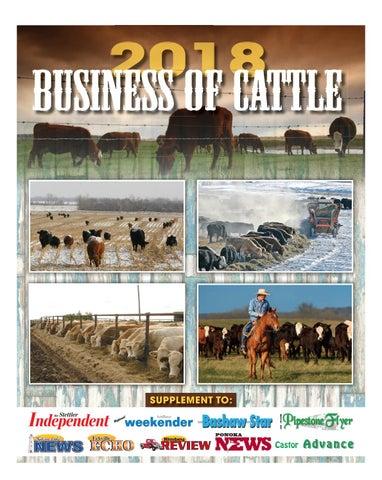 Beef Cattle Oiler