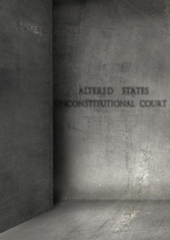 853534ad79cd Portfolio in Progress  Altered States Unconstitutional Court by ...