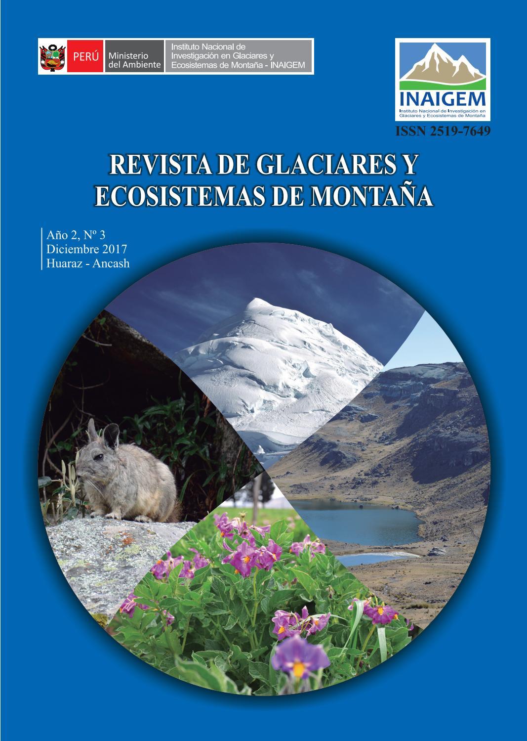Revista De Glaciares Y Ecosistemas De Montana N 3 By Inaigem Issuu