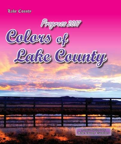 Progress 2017 By Lake County Examiner