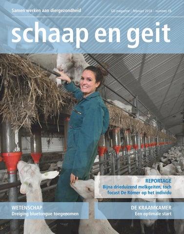 Schaap en geit februari 2018 by Gezondheidsdienst voor Dieren - issuu