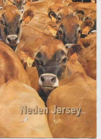 Hayvanlar için kuru süt: avantajları ve uygulama özellikleri