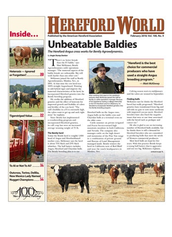 American Hereford | February 2010 Archives - American Hereford