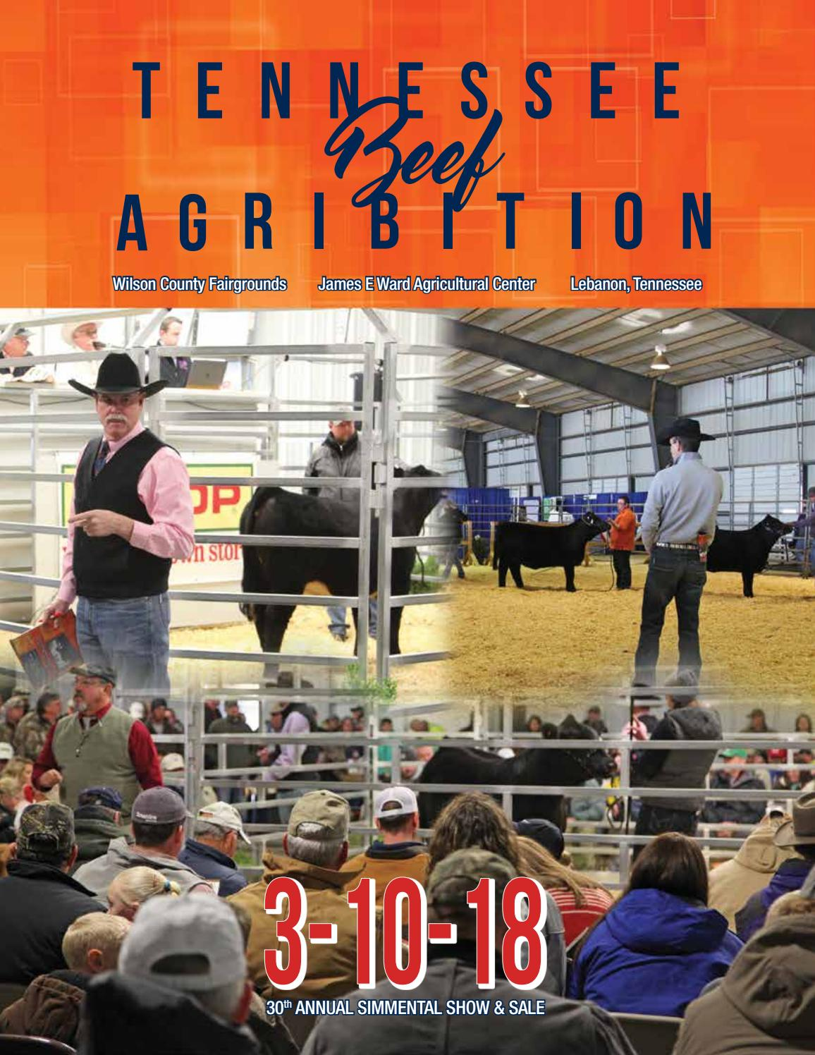 Tennessee Beef Agribition Simmental Sale 2018 by Barbour