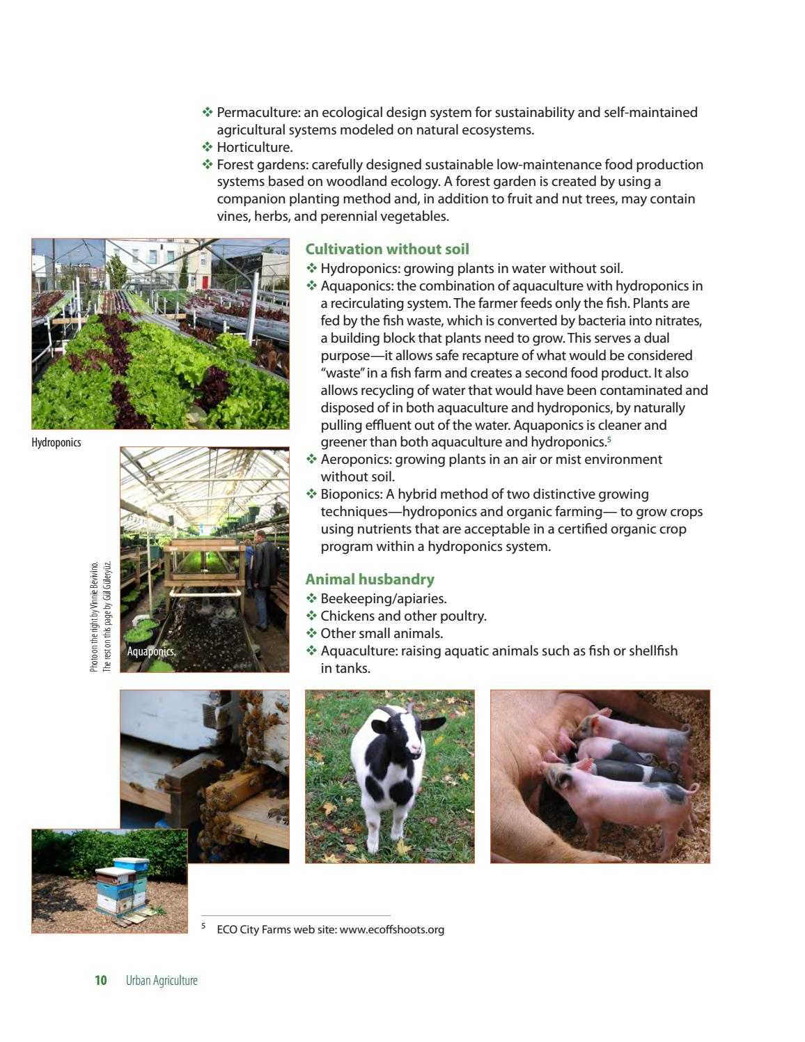 Urban Agriculture: A Tool for Creating Economic Development