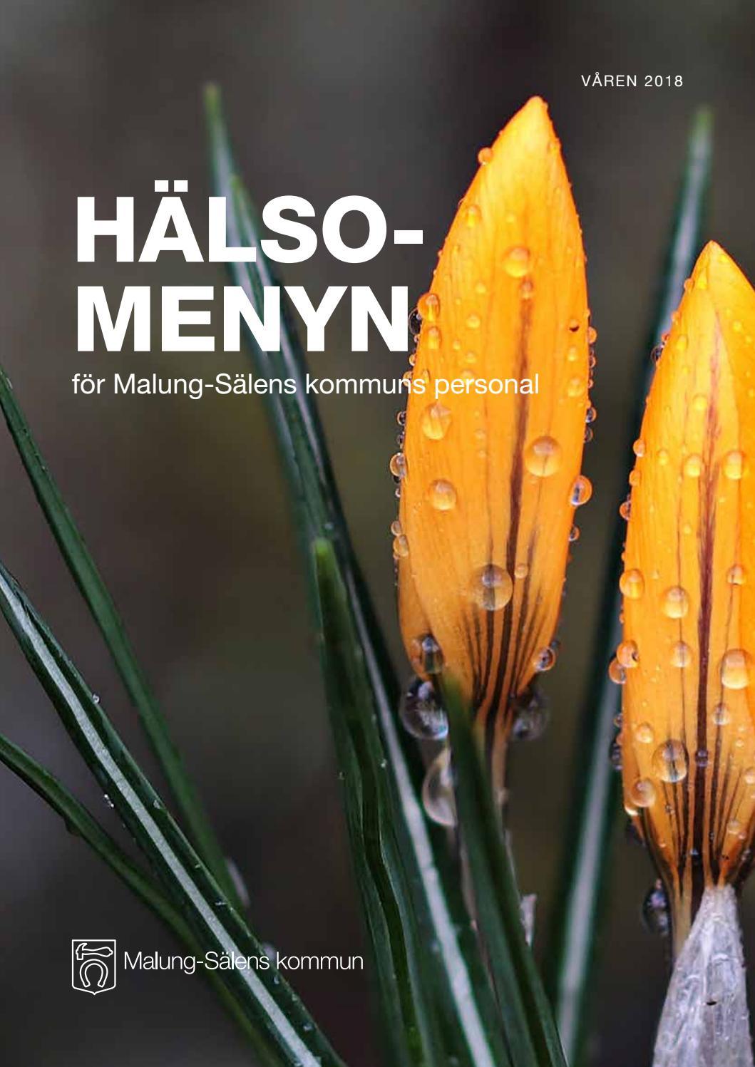 Halsomeny Varen18 By Anders Lowenberg Issuu