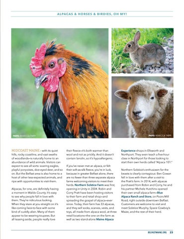 Page 25 of Alpacas & Horses & Birdies, Oh My!