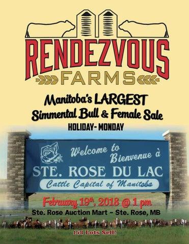 746da4c93e81 Rendezvous Farms 14th Annual Simmental Bull & Female Sale by Today's ...