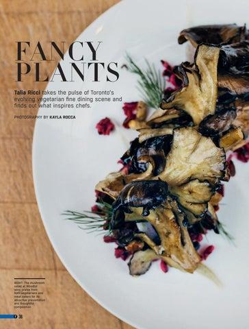 Page 36 of Fancy Plants