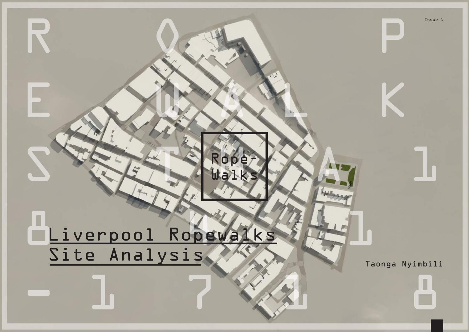 Liverpool Ropewalks Site Analysis   Project Brief by