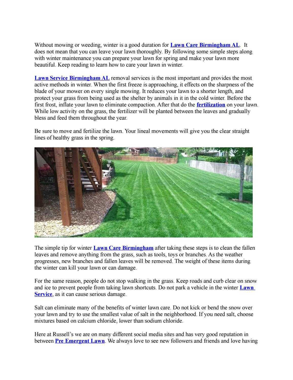 Lawn Care In Winter Tips On Caring