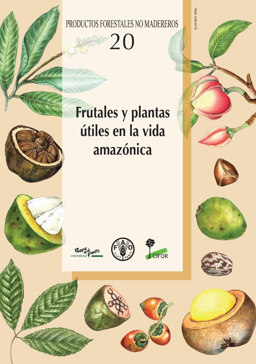 listo para alimentar tortuga de alimentos Mezcla de flores secas Tortuga 50g
