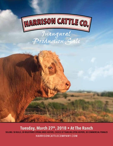 Harrison Cattle Co Inaugural Production