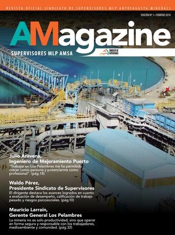 Revista Amagazine 1 By Periódico El Industrial Issuu