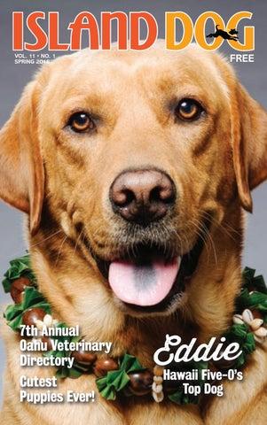 Island Dog Magazine Spring 2018 by Island Dog Magazine - issuu
