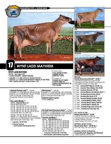 Page 20 of Lot 17 - Wynt Ladd Mayhiem