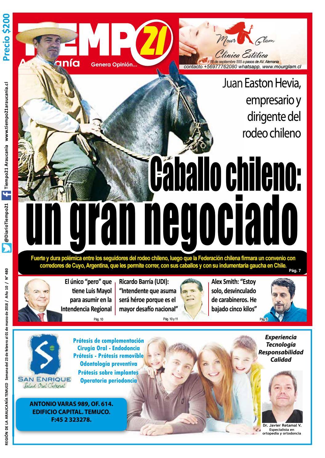 Edici N 480 Caballo Chileno Un Gran Negociado By Tiempo21  # Muebles Cuyanos