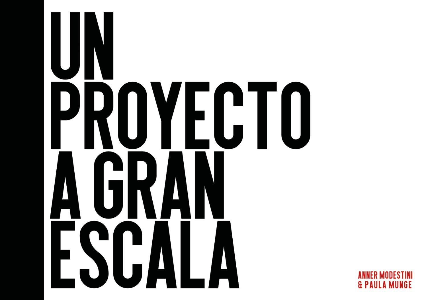 Un proyecto a gran escala by Paula Munge - issuu