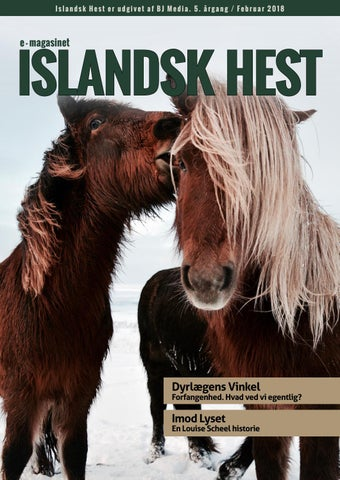 Fin Islandsk Hest februar 2018 by BJ Media - issuu XU-89