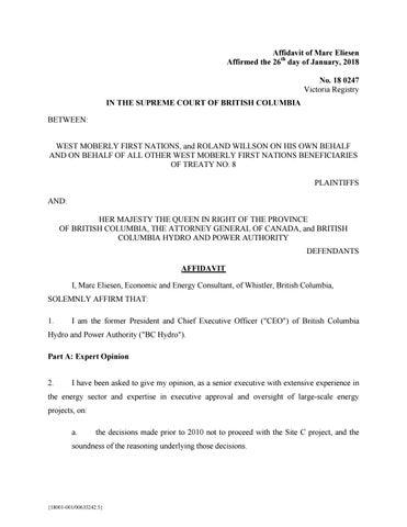 Affidavit #1 of Marc Eliesen by sagelegal - issuu