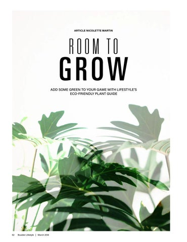 Page 62 of Room to Grow