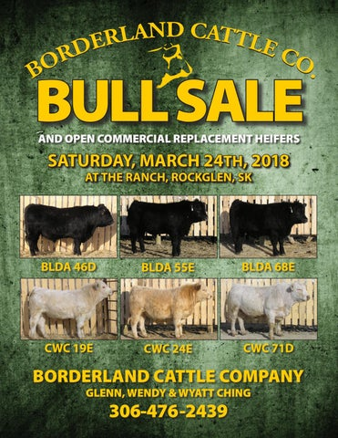 2018 borderland catalogue digital copy by Charolais Banner - issuu