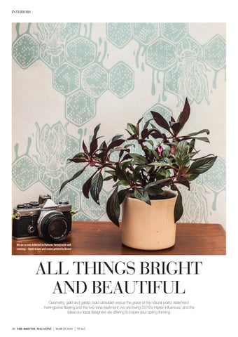 Page 88 of All Things Bright and Beautiful