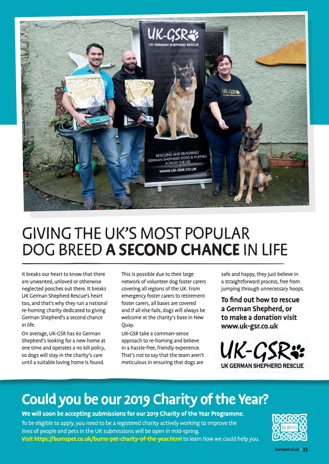 The Tailchaser Times - Issue 3 by Burns Pet Nutrition - issuu